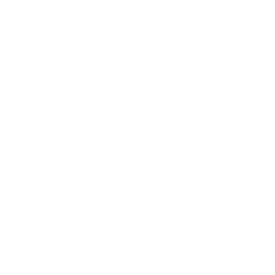 icon-white-facebook-250